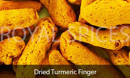 Dried Turmeric Finger